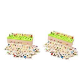 2pcs toddler kids montessori sorting grouping matching
