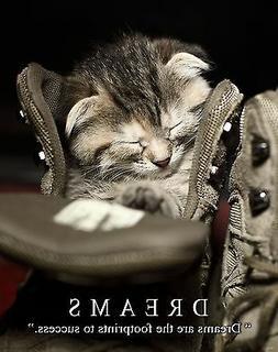 Cat Motivational Poster Print Kitten House Toys Pet Supplies